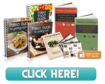 Paleo Cookbook by Nikki Young